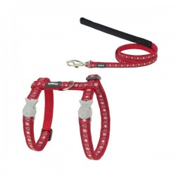 Combinaison Harnais et Laisse Noel pour Chat SANTA - RED DINGO Pet Adventure