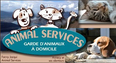 Animal Services 74
