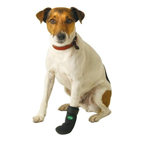 Chaussures de protection pour Chien TAPPIES - KARLIE