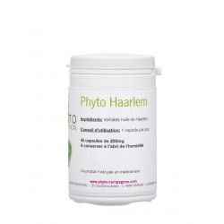 PHYTO COMPAGNON - Phyto Haarlem 48 capsules